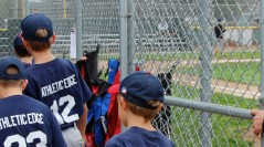 2015 Fall Ball Instructional League